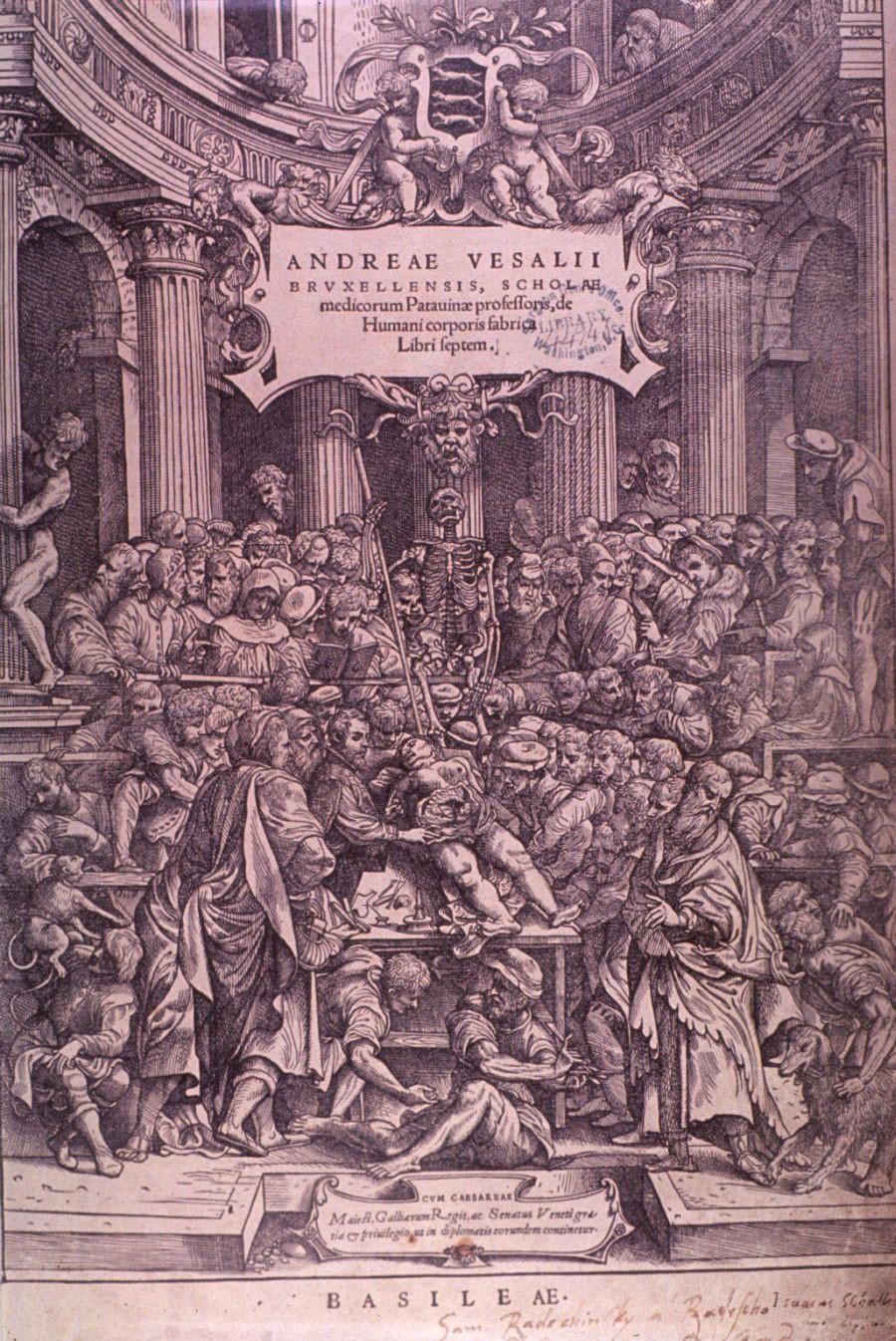 Vesalius performing dissection; Title page of book showing the dissection of a female criminal.